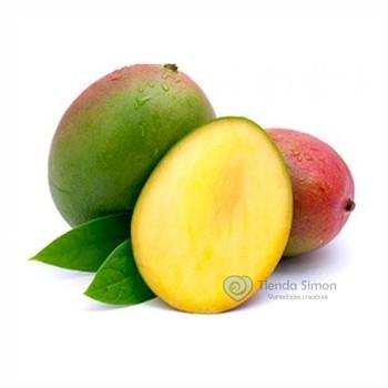 Mango tomy x 700 gr