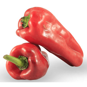 Pimentón rojo libra